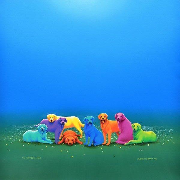 The Rainbow Pack