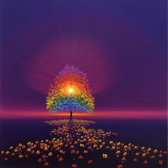 Rainbow Tree and Sunlit Poppies