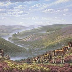 Exmoor Ponies above The Doone Valley
