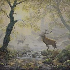 Exmoor Majesty