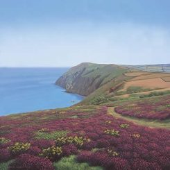Coastal Path at Elwill Bay, Trentishoe