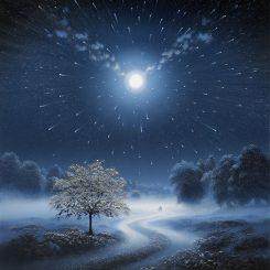Starlight - Portrait