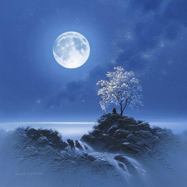 Moonlit Embrace (C)
